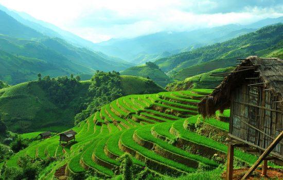 Vue sur les rizières en terrasses et constructions traditionnelles au Vietnam, Asie