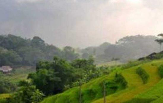 Réserve naturelle de Pu Luong / Rizières en terrasses