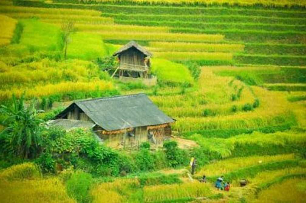 Mu Cang Chai Vietnam | Guide du Vietnam